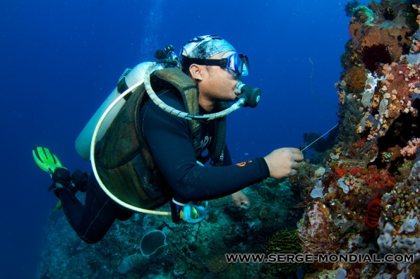 Aso Tadete, Dive Guide at NAD Lembeh Resort